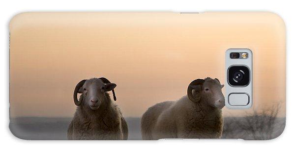 Sheep Galaxy Case - The Lamb by Angel Ciesniarska