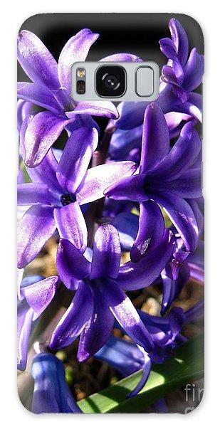 Hyacinth Named Peter Stuyvesant Galaxy Case by J McCombie