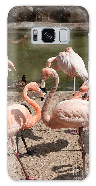 Flamingos Galaxy Case