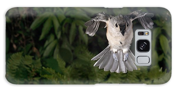 Tufted Titmouse In Flight Galaxy Case by Ted Kinsman