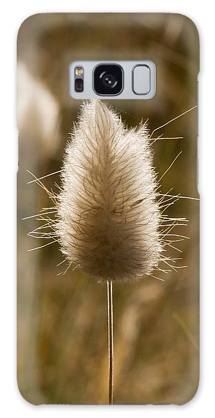 A Beautiful Seed Pod With Beautiful Sun Reflection Galaxy Case