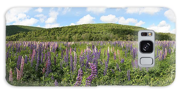 Cabot Trail Galaxy Case - A Field Of Lupines by Ted Kinsman