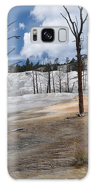 A Flower Blooms In Mammoth Hot Springs Galaxy Case