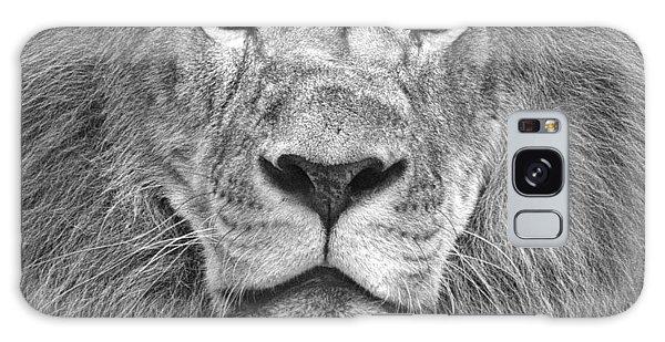 A Lion's Stare Galaxy Case