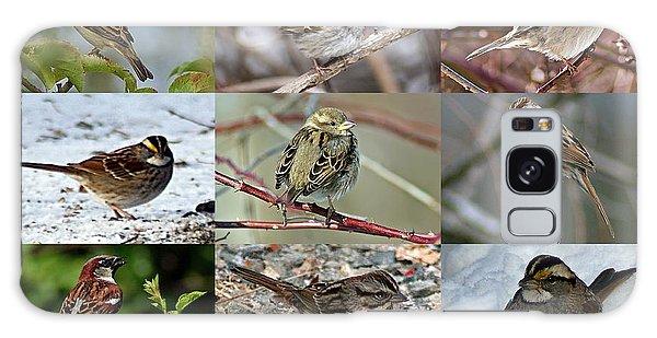 A Study In Sparrows Galaxy Case