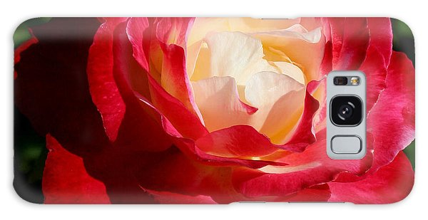 A Unique Rose Galaxy Case