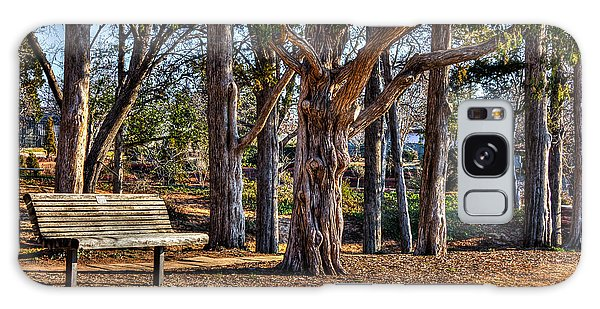 A Walk In The Park Galaxy Case by Doug Long