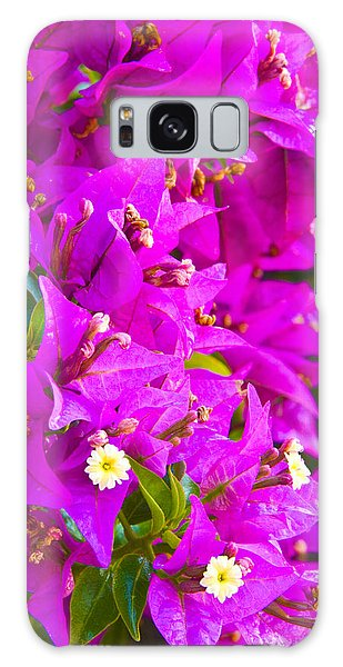 A Wall Of Flowers Galaxy Case