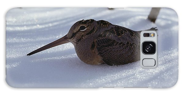 A Woodcock Sits In The Snow Galaxy Case