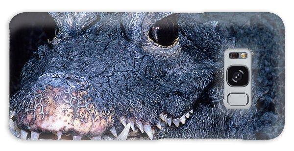 African Dwarf Crocodile Galaxy Case by Dante Fenolio
