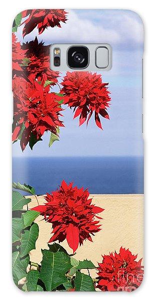 Gardenia Galaxy Case - African Gardenia (mitriostigma Axillare) by Bob Gibbons