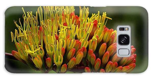 Agave Bloom Galaxy Case