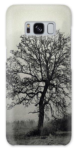 Age Old Tree Galaxy Case by Steve McKinzie