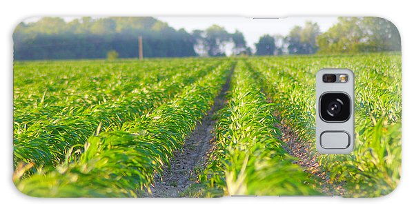 Agriculture- Corn 1 Galaxy Case