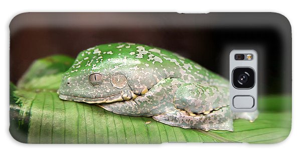 Amazon Leaf Frog Galaxy Case