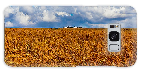 Amber Waves Of Grain Galaxy Case by Doug Long