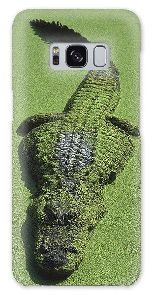 American Alligator Alligator Galaxy Case by Heidi & Hans-Juergen Koch