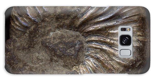 Ammonite Back Galaxy Case