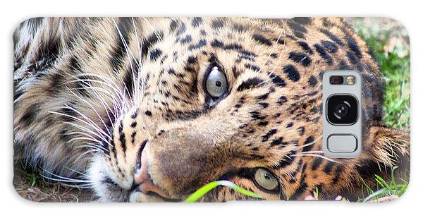 Amur Leopard Galaxy Case by Lynne Jenkins
