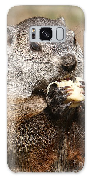 Animal - Woodchuck - Eating Galaxy Case