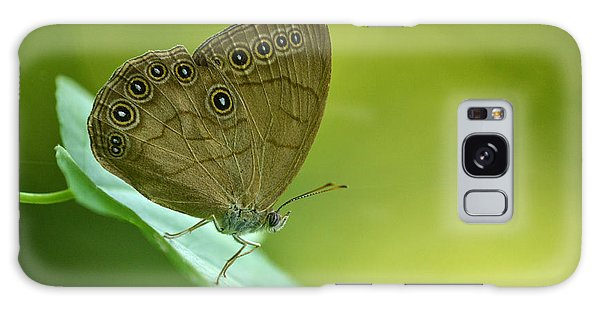 Appalachian Brown Galaxy Case