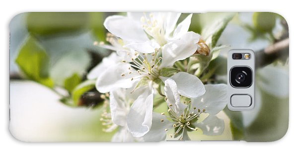 Apple Tree Flowers Galaxy Case