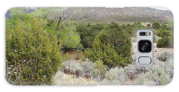 April New Mexico Desert Galaxy Case