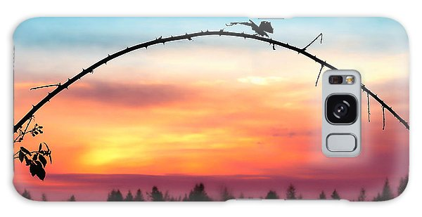 Arch Silhouette Framing Sunset Galaxy Case by Tracie Kaska