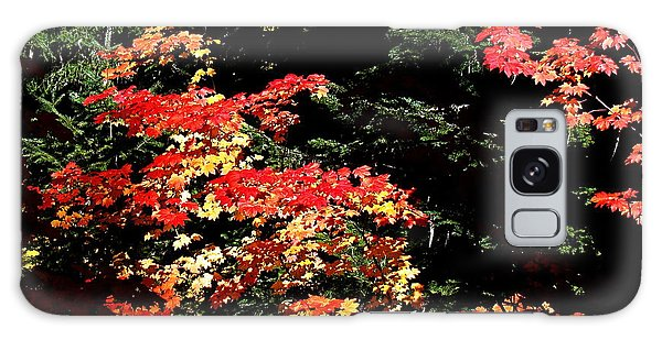 Arrival Of Autumn Galaxy Case by Nick Kloepping
