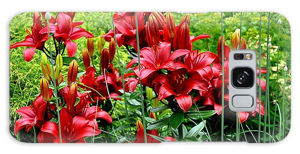 Asiatic Lilies 2 Galaxy Case by Tanya  Searcy
