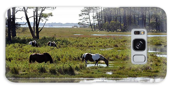 Galaxy Case featuring the photograph Assateague Wild Horses Feeding by Dan Friend