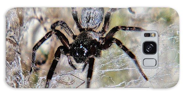 Australian Spider Badumna Longinqua Galaxy Case