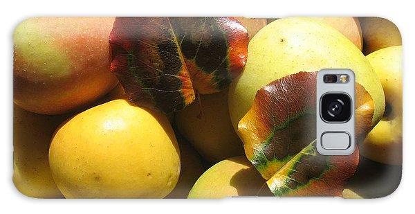 Autumn Apple Afternoon Galaxy Case
