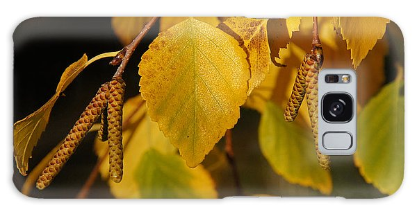 Autumn Birch In Southern Oregon Galaxy Case by Mick Anderson