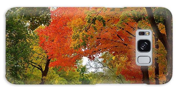 Autumn Canopy Galaxy Case