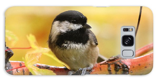 Chickadee Galaxy S8 Case - Autumn Chickadee by Angie Vogel