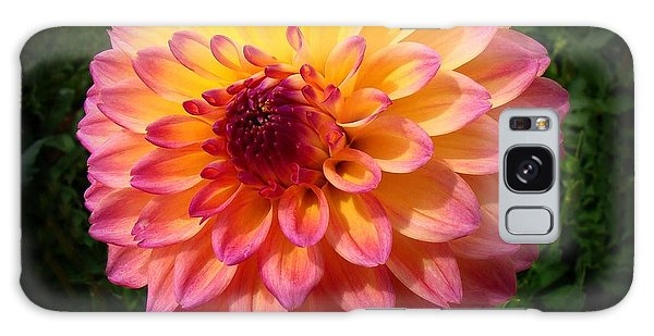 Autumn Colors Galaxy Case by Nick Kloepping