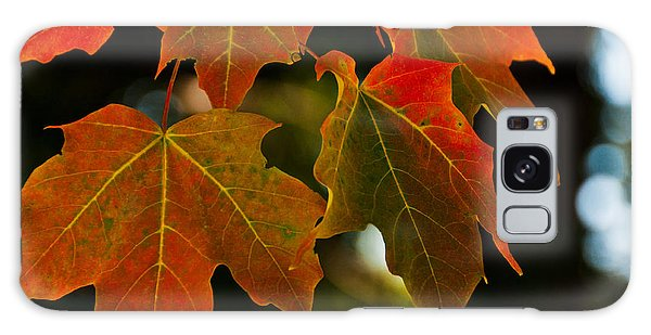 Autumn Glory Galaxy Case by Cheryl Baxter