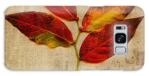 Autumn Leaf With Texture Galaxy Case