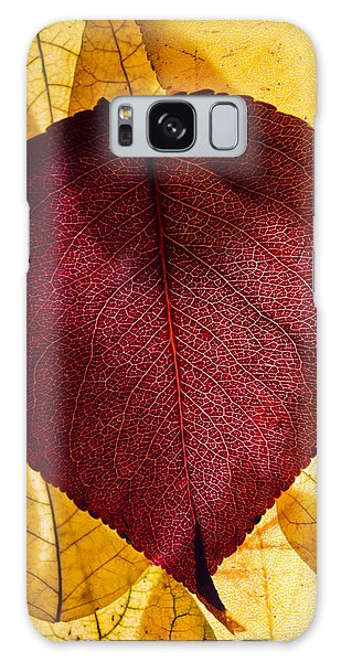 Autumn Leaves II Galaxy Case
