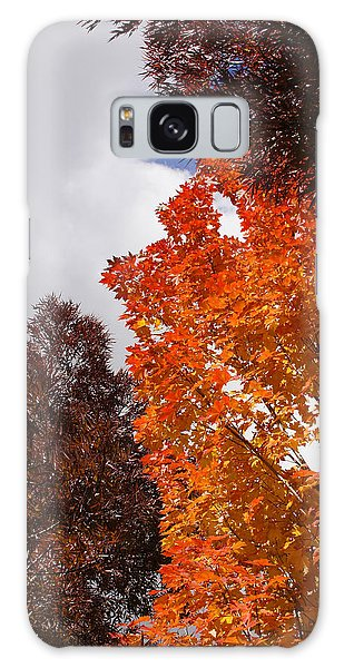 Autumn Looking Up Galaxy Case by Mick Anderson