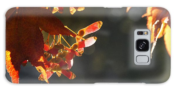 Autumn Maple Galaxy Case by Mick Anderson