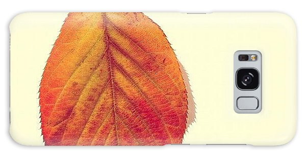 Orange Galaxy Case - Autumn by Nic Squirrell