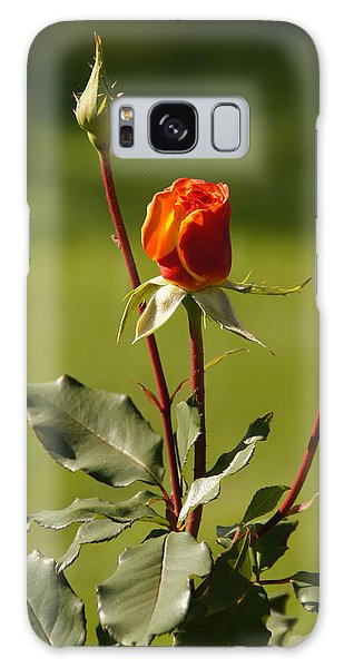 Autumn Rose Galaxy Case by Mick Anderson