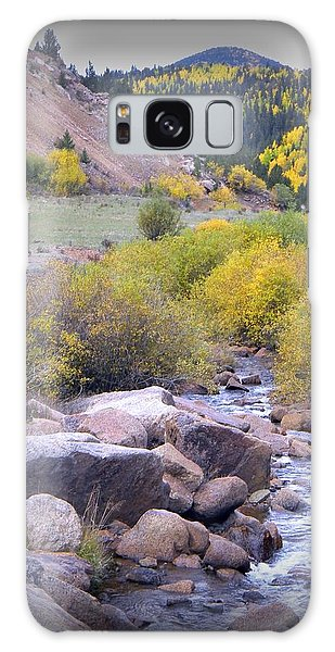 Autumn Stream Galaxy Case by Michelle Frizzell-Thompson