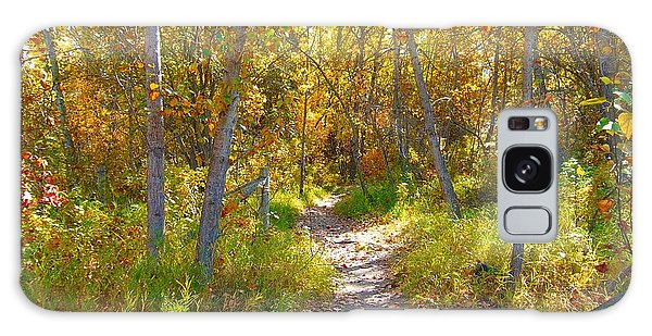 Autumn Trail Galaxy Case by Jim Sauchyn
