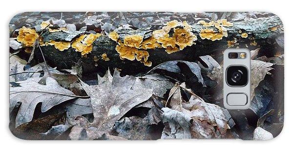 Autumns Art 3 Galaxy Case by Gerald Strine