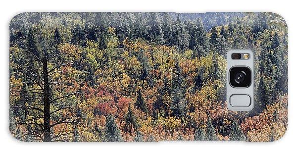 Autumns Palette Galaxy Case