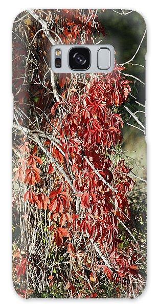 Autumns Red Vines Galaxy Case