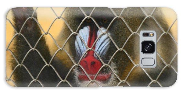 Baboon Behind Bars Galaxy Case by Kym Backland